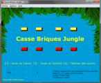 Casse Briques Jungle